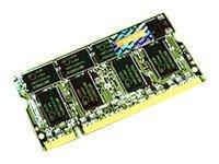 Transcend 256 MB DDR DDR333 Non-ECC Memory Speichermodul 0,25 GB 333 MHz